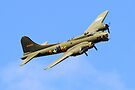 Sally B Shoreham Airshow 2014 by Colin  Williams Photography