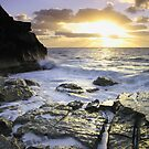 Bermuda's Rocky Shore by Lucy Hollis