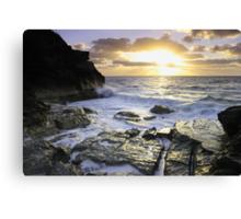 Bermuda's Rocky Shore Canvas Print