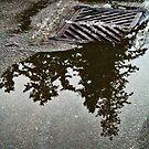 Draining Reflections by Tamara Valjean