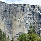 East side of El Capitan by photoclimber