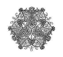 Libra - Zodiac Symbol Photographic Print
