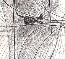 THE CAT'S STRANGE TRAVELS(C2013) by Paul Romanowski