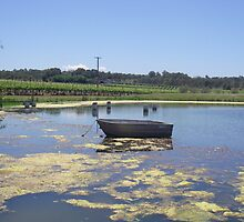 Tintilla Estate Winery, HUNTER VALLEY by becnbic