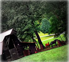 Franklin, North Carolina Barn and Horses by Susan  McDonald
