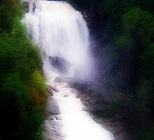 Waterfall - North Carolina by Susan  McDonald