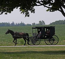 The Side of the Amish Not Seen by Rachel Sonnenschein