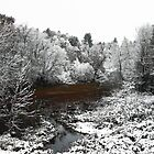 First Snow on the Oxbow by Wayne King