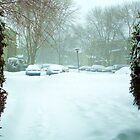 ENTRANCE TO A SNOWY DAY by JoAnnHayden