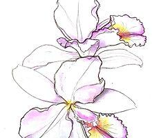 Orchid, beauty flowers by María Díaz Jiménez