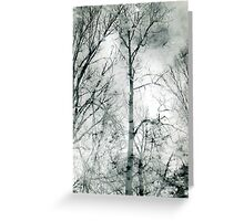 bare trees  #1 Greeting Card