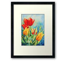 Primary Tulips Framed Print