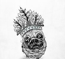 Indian Pug  by LouJah-