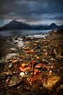 On the shore at Elgol, Loch Scavaig. Isle of Skye, Scotland by photosecosse /barbara jones