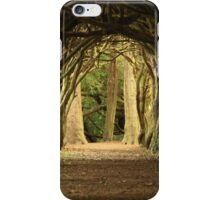Cloister at Gormanston College iPhone Case/Skin
