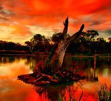 """""""Sundown at Balyang"""" by Phil Thomson IPA"""
