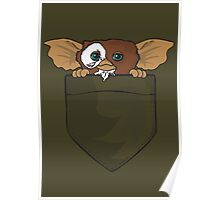 Gizmo In A Pocket Poster