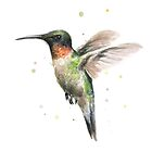 Hummingbird by OlechkaDesign