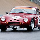 TVR Griffith by Paul Woloschuk