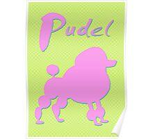 pink poodle - dog Poster