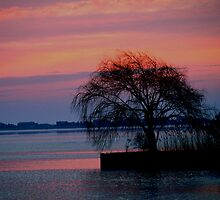 Sunrise in Watermill by Barbara Gerstner