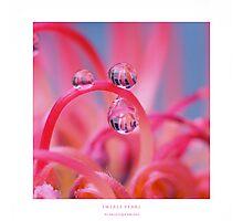 Swirly pearls Photographic Print