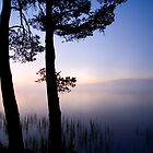 Loch Garten, Boat of Garten, Highland, Scotland by Daniel Webb