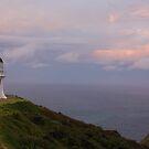 Cape by Gareth Bowell