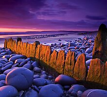 Old Groyne at Westward Ho by Robert Kendall
