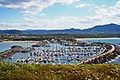 Coff Harbour Marina by Evita