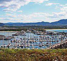 Coff Harbour Marina by Evita