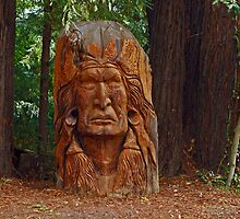Chief Sequoia by E.R. Bazor
