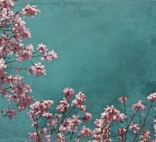 Pink Apple Blossoms on Teal Blue Green Sky by BrookeRyanPhoto