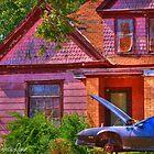 Ziggy's House by dimalynn