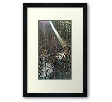 Sun's ray falling onto spider web pools Framed Print