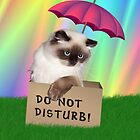 Do Not Disturb! Cat in Box by lydiasart
