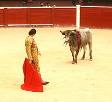 Bull fighter stares down the bull  by Mountainimage