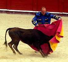 Novice bullfighter  by Mountainimage