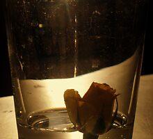 Rose Bud by girljo818