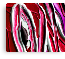 Red and Black Abstract Design  Canvas Print
