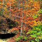Fall in Northwest Arkansas by LisaM