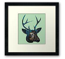 Night, Night Deer. Framed Print