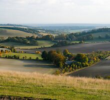 Wiltshire Valley by Paul Davey