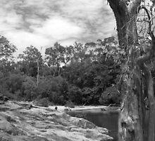 Big Crystal Creek, Paluma by John Douglas
