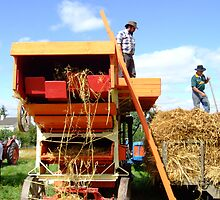 Threshing day by Joe Cashin