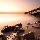 Clevedon Pier by igotmeacanon