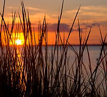 Chincoteague Sunset by John Wright