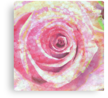Rose in Light Canvas Print