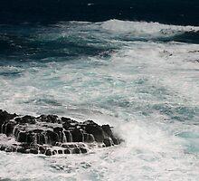 The White Ocean by Anastasia Zhivilo