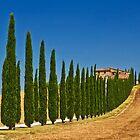 Road To Tuscany by seawhisper